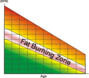 Fat Burning Zone - Old Science